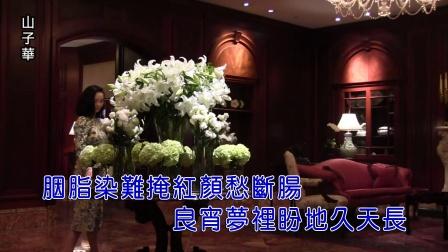 山子华-红颜泪 红日蓝月KTV推介