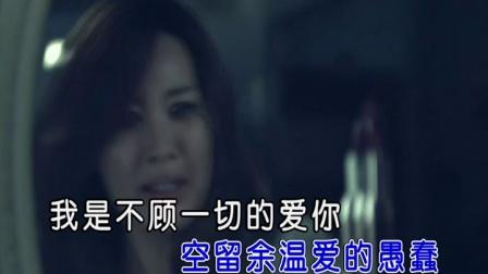 宋向楠-我这个受尽伤痕的女人 红日蓝月KTV推介