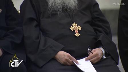 教宗接见天主教与东正教神学对话国际混合委员会:即使面对暴力和迫害,也要见证基督的爱