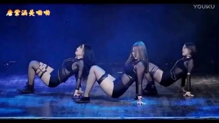 DJ-凤凰情歌-门丽&严龙-美女团体舞蹈-最新网络