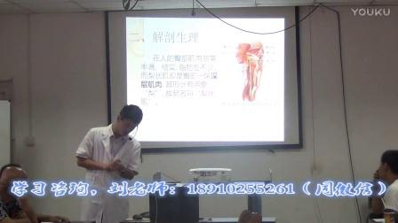 张氏零力度(无痛)正骨疗法-张振听(新)