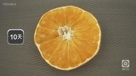 变质的橙子