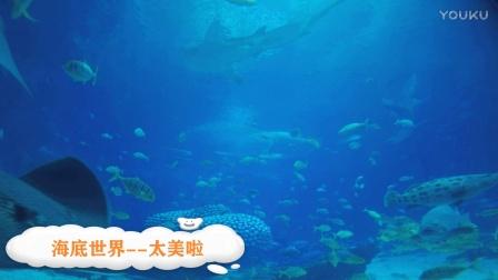 海底世界--珠海海洋公园
