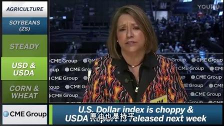 芝商所市场评论- 财经视频 2017 年2 月2 (晚)