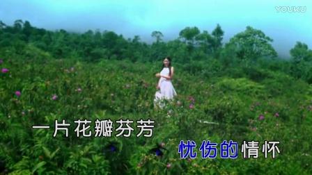 山风-花蝶也有泪(原版HD)|壹字唱片KTV新歌推荐