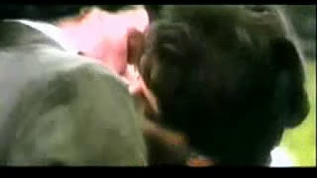 芭芭拉 史翠珊,Memory,猫,MV