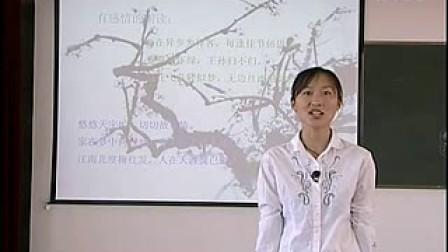 梅花魂 小学语文说课视频(1)