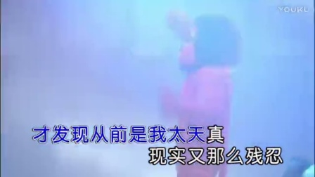 邓小龙-走着走着就散了DJ 红日蓝月KTV推介