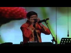 杨晟-花儿为什么这样红-追梦100名家音乐会