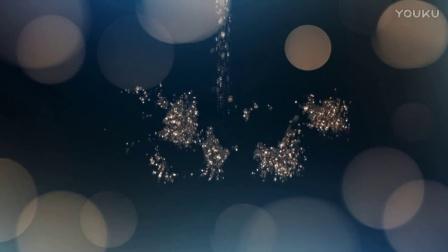 E5婚礼片头 edius premiere 会声会影logo视频模板