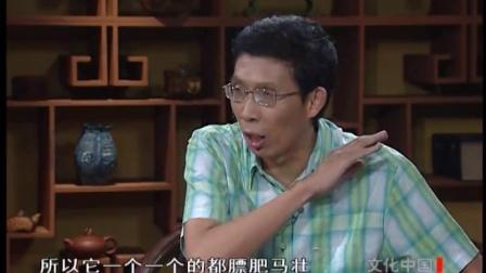 《文化中国之汉武大帝》08集上