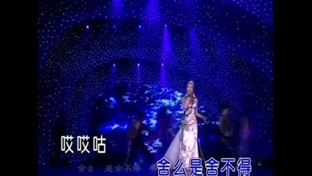 林林-舍不得(现场版)红日蓝月KTV推介