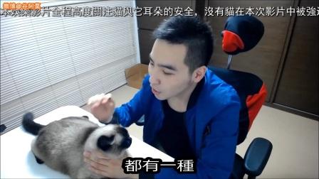 【谷阿莫】人猫废片1