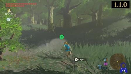 Zelda Breath of The Wild _ 1.1.0 VS 1.1.1 Update _ FRAMERATE FIXED.mp4