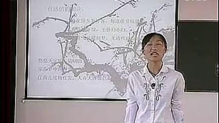 【梅花魂】小学语文说课视频_标清
