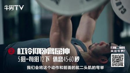 完整手臂训练计划,6个动作带你炼出完美手臂肌肉线条 。