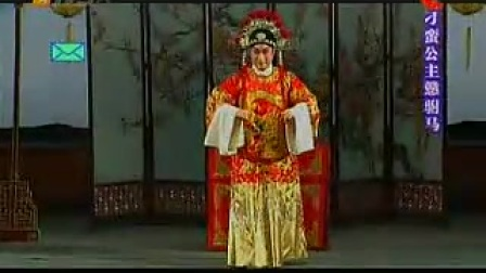 刁蛮公主赣驸马
