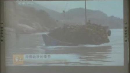 《原生生物的主要类群》课堂实录(北师大版生物八下,北京四中:段玉佩)
