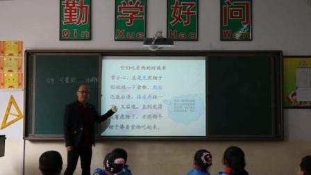 2016年微课评比一等奖获奖作品《可爱的(小动物)》(北师大版语文三下,高海涛)