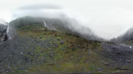 【加拿大BC省360°全景视频】大熊雨林-II 原始森林漫步