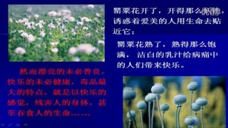 人教版初中思想品德七年级《学会拒绝-身边的诱惑》10分钟微型课视频,北京郭莉