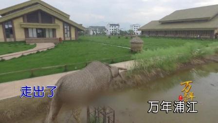 何龙雨-万年上山(原版)红日蓝月KTV推介