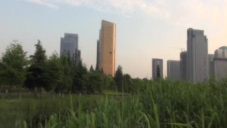 亲,立夏了,义乌丝路金融小镇更美丽了!