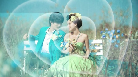 G2婚礼相册 edius premiere 会声会影视频模板
