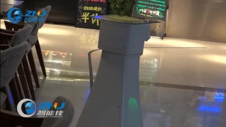 智能佳 迪娜机器人演示