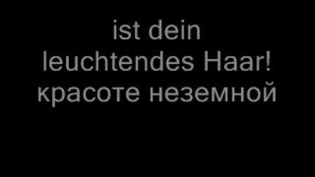 《你是我心中的一切》(交响乐伴奏) 莱哈尔《微笑王国》<Dein ist mein ganzes herz>