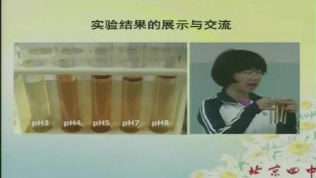 中學生物高一《用比色法探究pH對酶活性的影響》說課 北京張瑾(北京市首屆中小學青年教師教學說課大賽)