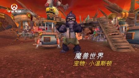 《守望先锋》年度游戏版内容介绍