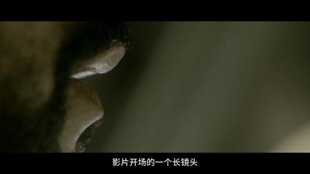电影路透社170524:生猛的比基尼美女