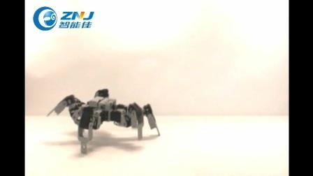 智能佳-百乐系列加强版-蜘蛛演示视频