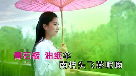 董娜 - 杨梅谣(HD)|壹字唱片KTV新歌推荐