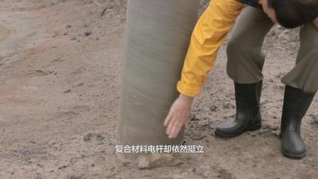 中国技术专家