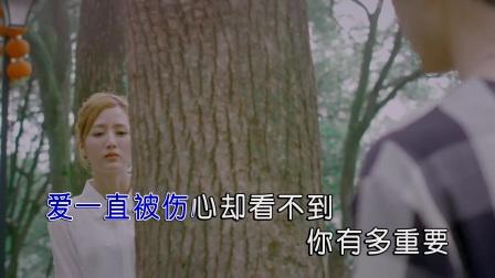 沙靖杰-其实还爱你(原版)红日蓝月KTV推介
