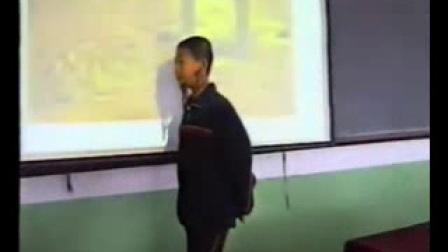 《思想的活躍與百家爭鳴》北師大版歷史八年級-劉應潔