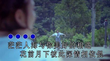 汪刚-想要忘记你真的不容易 红日蓝月KTV推介