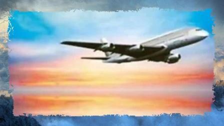 穿越时空-失踪48年的飞机突然出现 舱内崭新依旧