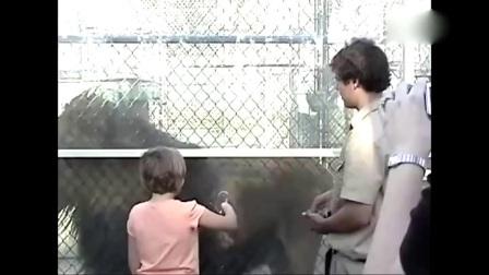 52 萌萝莉与黑猩猩玩舌吻-超级搞笑宝宝
