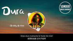 抖音上很火的一首西班牙语歌曲《Dura》『中文翻译』