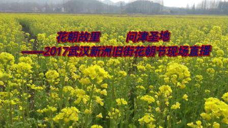 2017武汉新洲旧街花朝节全程直播20170312