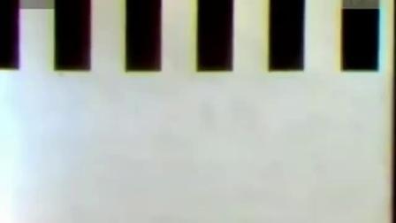 加里森敢死队05 - 虎口余生 标清版