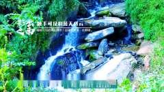 中国美的风景姚青春老家云南大自然风光山水风