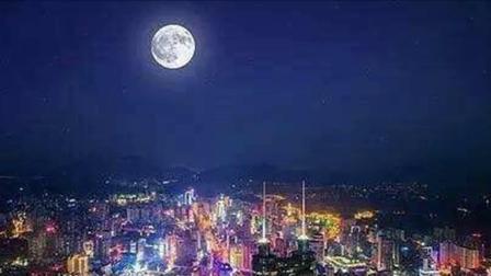 广东音乐《月下飞鸢》高胡领奏:冯志明