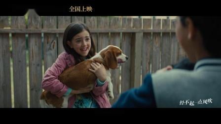刘宪华 - 当你孤单你会想起谁(《一条狗的使命2》电影中国区推广曲)