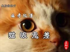 离奇故事《猫眼鬼差》58