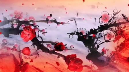 红梅赞--背景视频-党校
