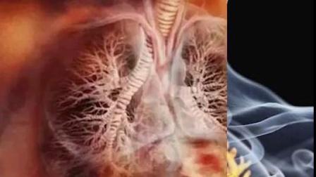 健康养生#清肺#健康茶养生烟